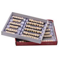 168pcs Dental Denture Acrylic Resin 24 Plate Full Set Teeth Upper Lower Shade A3