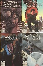 Angel:  Blood and Trenches #1-4 (John Byrne, IDW, 2009)