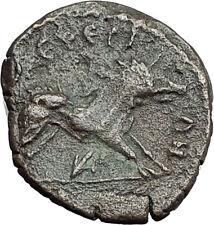 ANTONINUS PIUS 138AD Ephesus BOAR of CALYDON Genuine Ancient Roman Coin i59693