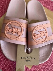 COACH ULI SPORT SLIDE WITH HORSE AND CARRIGE PRINT - Blossom / Melon New