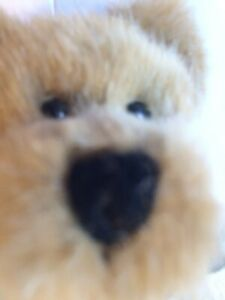 SCARCE Boyds Bear Plush Teddy Bean Commemorative Tan Brown Green Ribbon Retired