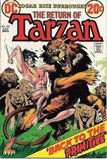 Tarzan Comic Book #221, DC Comics 1973 VERY FINE