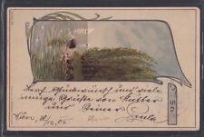AUSTRIA 1905 SIGNED F.L STERN ARTISTIC ART NOUVEAU NATURE SCENE POSTCARD VIENNA