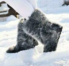 Toscana Fur Winter Boots for Women, Moutons, Gray/Blue Goat, Handmade by LITVIN