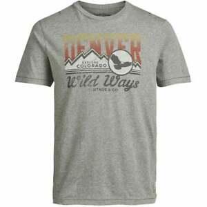 Gardner Jack & Jones Mens Slim Fit Vintage Print T-Shirts - Grey - BNWT