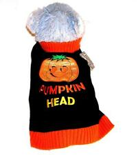 Animal Welfare League Benefit Costume Parade Halloween Dog Sz XS PUMPKIN SWEATER