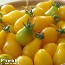 YELLOW PEAR TOMATO 295+ Heirloom Tomato Seeds