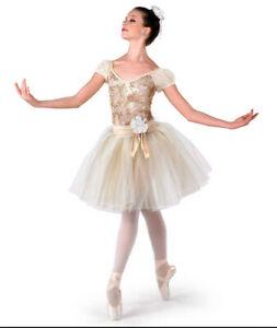 A Wish Come True Vivaldi Romantic Ballet Contemporary Costume Girl Child Size M