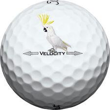 Titleist Velocity 36 (4A) AAAA -  Used Golf Balls ** Free Shipping **