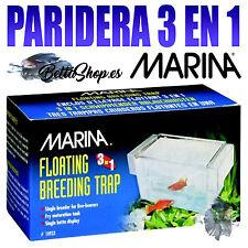 PARIDERA ACUARIO FLOTANTE MARINA 3 EN 1 SEPARADOR PARA CRIAS PARIDERAS ACUARIO