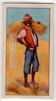 Native African Harvesting Grain Crop 80+  Y/O Ad Trade Card