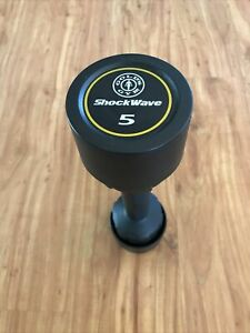 Golds Gym ShockWave 5 Pound Workout Dumbbells Dual Use Curling  Shake Weight
