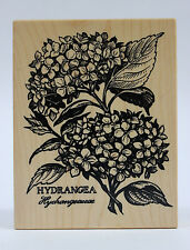 PSX Botanical Hydrangea Wood Mounted Rubber Stamp K-1468 Rare and Gorgeous