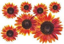 Blumen Aufkleber Flower Power Auto Aufkleber: Flower Set 12-Mini-36 Stück