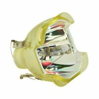 REPLACEMENT BULB FOR ZENITH D52WLCD BULB ONLY