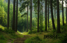 9X6FT Forest Jungle Vinyl Studio Backdrop Photography Photo Background DB884