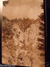 VINTAGE POSTCARD REAL PHOTO PRRC LANDSCAP MOUNTAIN SIDE TREES ROCKY SCENIC