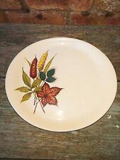 Vintage WOOD & SONS Retro Homemaker Alpine Ironstone Oval Plate Autumn