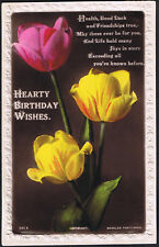 Hearty Birthday Wishes - Vintage Beagles Postcard - Floral Design