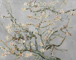 Vincent van Gogh 1890, Almond Blossoms Grey, 8x10inch (plus border) Canvas Print