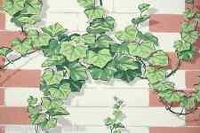 1950s Vintage Kitchen Wallpaper Climbing Ivy on Bricks