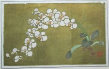 Antique Chinese Woodblock Print White Orchid Flowers Hanga Paper Signed Gold