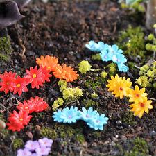 10 miniature fleur Moss Bonsai bricolage artisanat Fairy Garden Landscape Decor