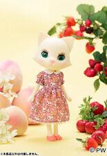 "PetWORKs Nikki doll  "" Fruit Party ""  フルーツパーティーのニッキ  (Odeco Nikki)  Neuve / NRFB"
