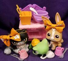 LIttlest Pet Shop LPS #433 Turtle #434 Rabbit #435 Persian Cat Black Halloween