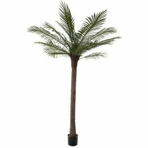 Tall 78 Inch PalmTree Faux Artificial Plant Indoor Outdoor Large Realistic