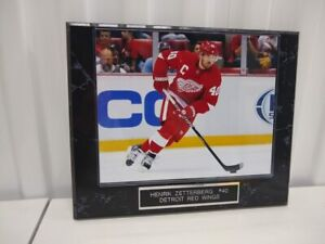 Red Wings Joe Louis Arena Final Game Engraved Collector Plaque w//8x10 Photo