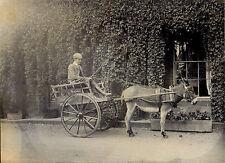 Sepia 1900s Collectable Antique Photographs (Pre-1940)