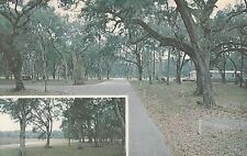 LAM (W) Bushnell, FL - The Woods Mobile Home Subdivision - Two Views of Grounds