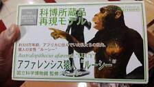 Kaiyodo National Museum of Nature & Science Lucy Australopithecus Mini Figurine