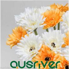 Daisy Individual Flowers Décor