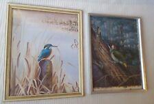 John Baxendale 1919-1982 Kingfisher & Woodpecker original water colour paintings