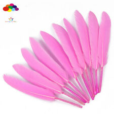 DIY Natural Goose Feather Pink 4-6Inch/10-15Cm 100 Pcs Carnival Headress Costume
