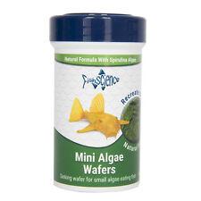 Fish Science Mini Algae Wafers 100g Aquarium Natural Insect Meal