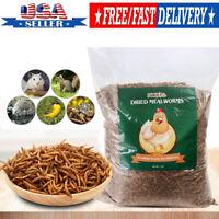 11LBS Bulk Dried Mealworms for Wild Birds Food Blue Bird Chickens Hen Treats