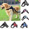 No Pull Nylon Saddle Shape Pet Harness Dog Vest Collar Chest Strap Lead Walking