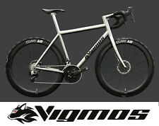 Vigmos Diva Titan Unikat Etap disc vollintegriert Rennrad bici worlds best