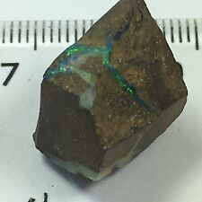 Rough Boulder Opal Preform Australia For Lapidary Or Display