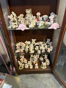 Piggin Pigs (x60) With Glass display Cabinet