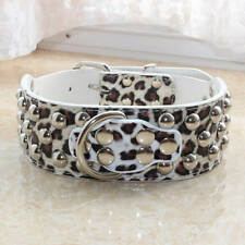 Gator Leather Spiked Studded Dog Collar for Medium Large Breed Pit Bull Terrier