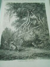 Gravure 1863 - Amérique du Nord Sépultures d'Indiens Assiniboins