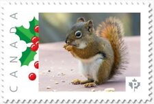 lq. SQUIRREL = Rodents = Picture Postage stamp = MNH-VF Canada 2018 [p18-01sn20]