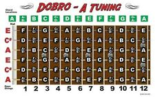 Dobro Fretboard Chart Resonator Guitar Poster A Tuning ALT Notes
