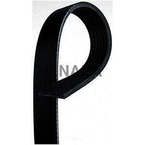 Serpentine Belt-Power Steering NAPA/BELTS & HOSE-NBH 25060952