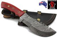 Tracker Hunting Knife, Damascus Blade, Tinted Camel Bone Handle, Leather Sheath