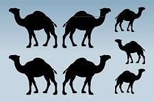 7 CAMEL SILHOUETTE   stickers  decal window car home